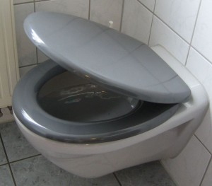 Toilettensitz mit Soft-Close-Absenkautomatik