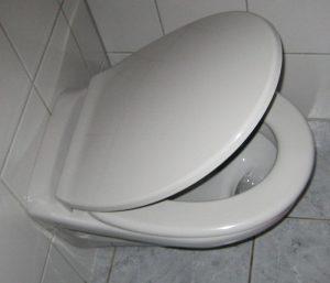 WC-Sitz-manhattan